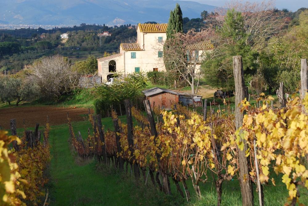 Immobilie Weingut in der Toskana zum Restaurieren