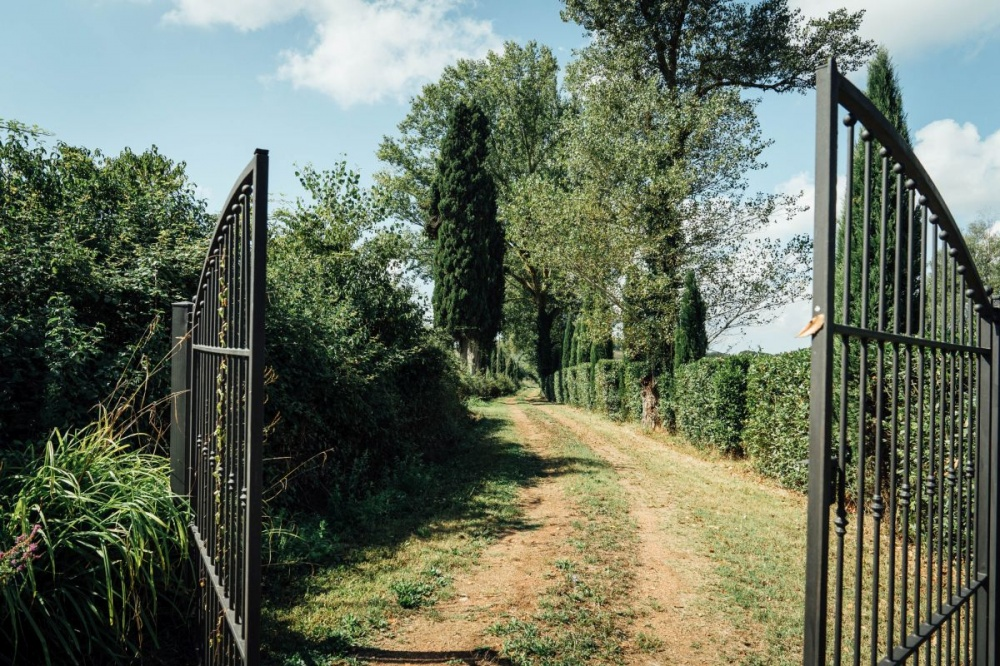 Grundstück mit 100 Olivenbäumen